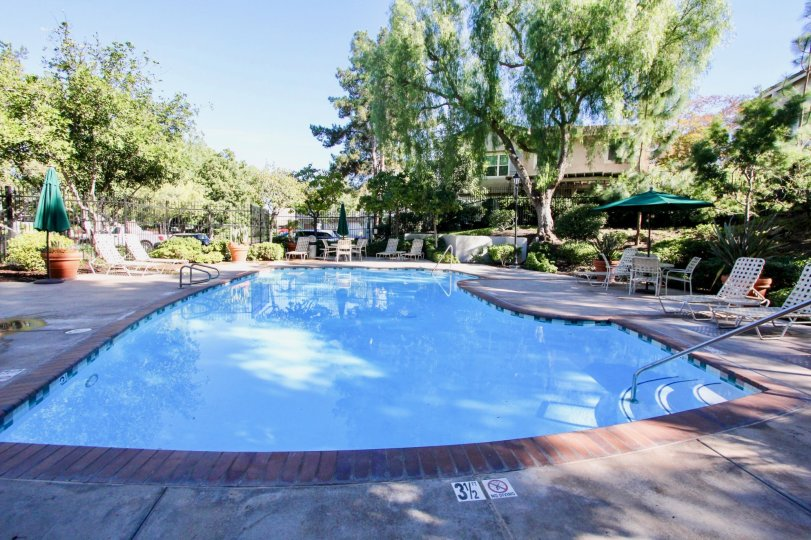 Windham's large blue swimming pool with seating and chairs in Rancho Bernardo CA
