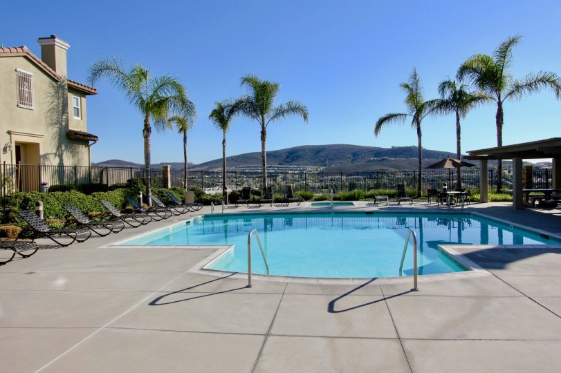 Nice swimming pool with palm trees and sitout on sunny day in Calico Bluffs of San Marcos
