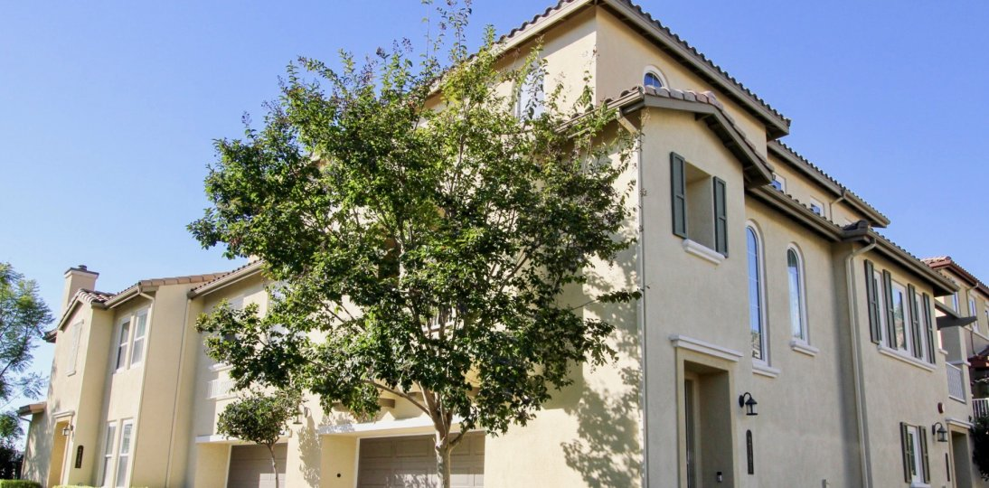 Two story housing with tree at Calico Bluffs in San Marcos Califonia