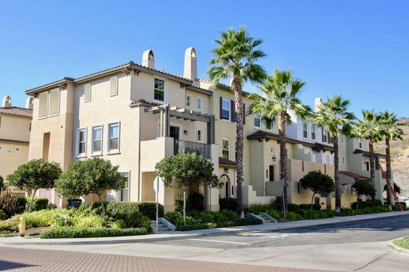 Larkspur Heights condominium complex street view San Marcos California