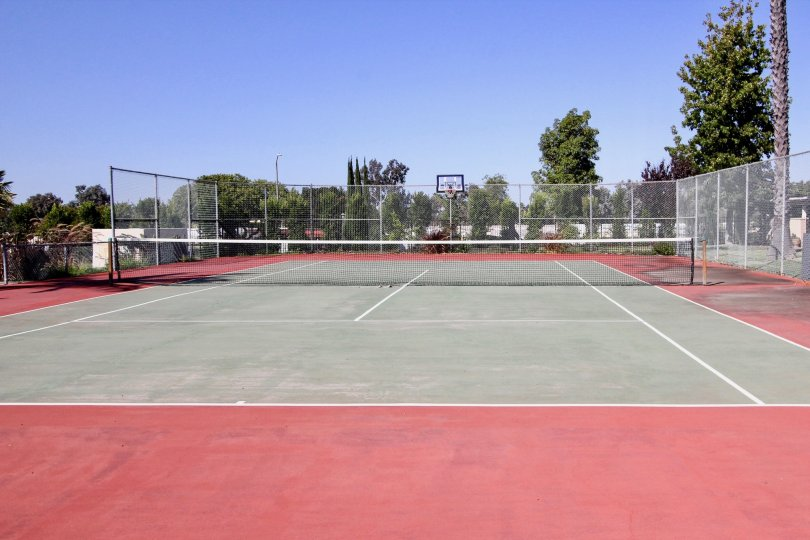 San Marcos tennis court in a sunny day surrounded by trees