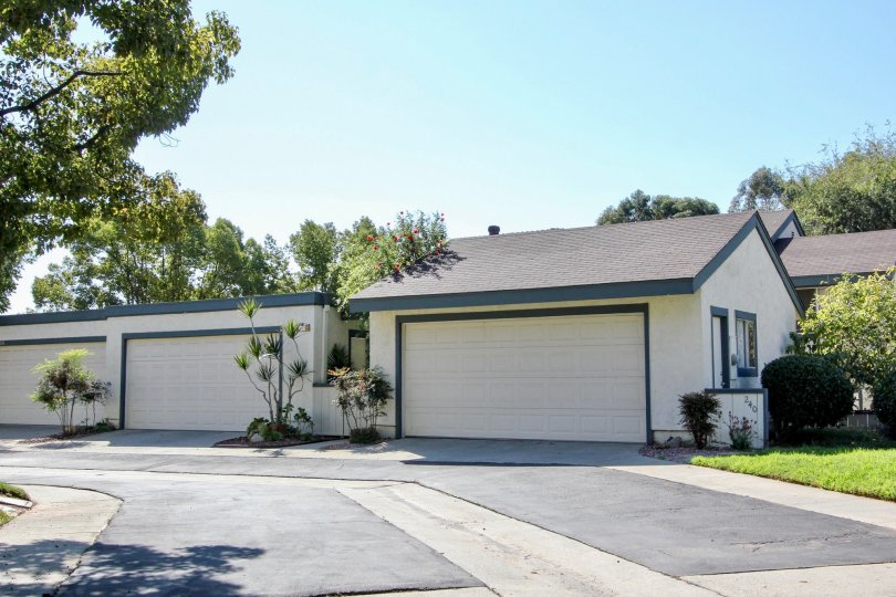 Double car garage units on a backlane with shrubs and mature trees in San Marcos