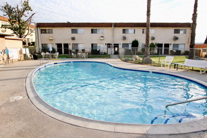 The pool area during the day in Horizon Village with pool hair and palm trees in Santee California