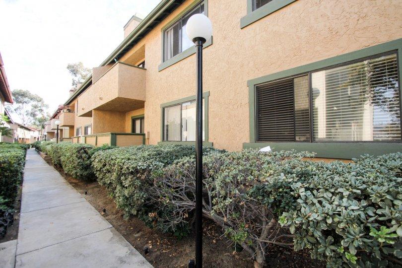 Riderwood Terrace  , Santee ,California,lamp ost, plants