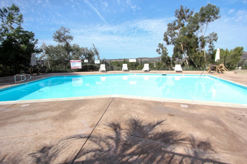 Swimming pool surrounded by black fence and trees and a sunny day in the Riderwood Terrace community in Santee, Californina