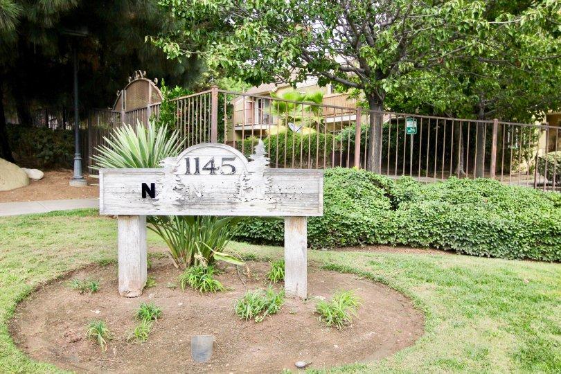Green landscaping at Canyon Villas in Spring Valley, California.