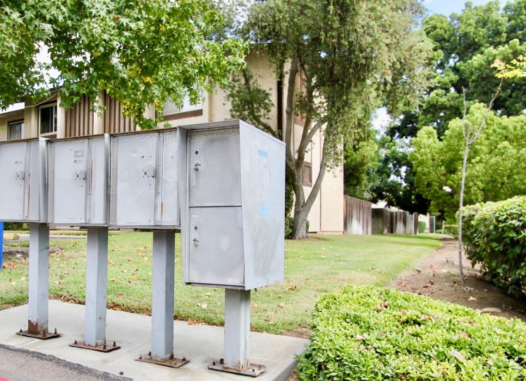 THE APARTMENT IN THE CAREFREE SOUTH WITH THE ELECTRONIC BOXES, GRASSLAND, PLANTS, TREES