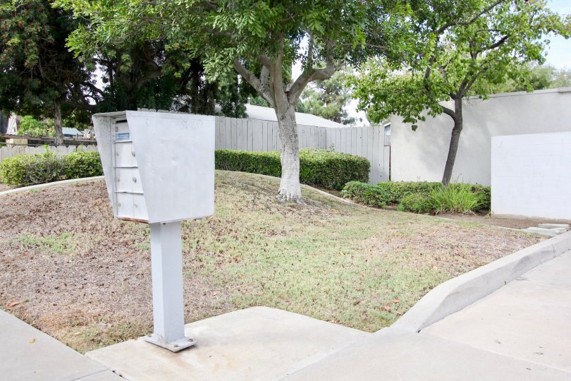 A view of a mailbox in front of a tree in the Lamar Townhomes community in Spring Valley, California