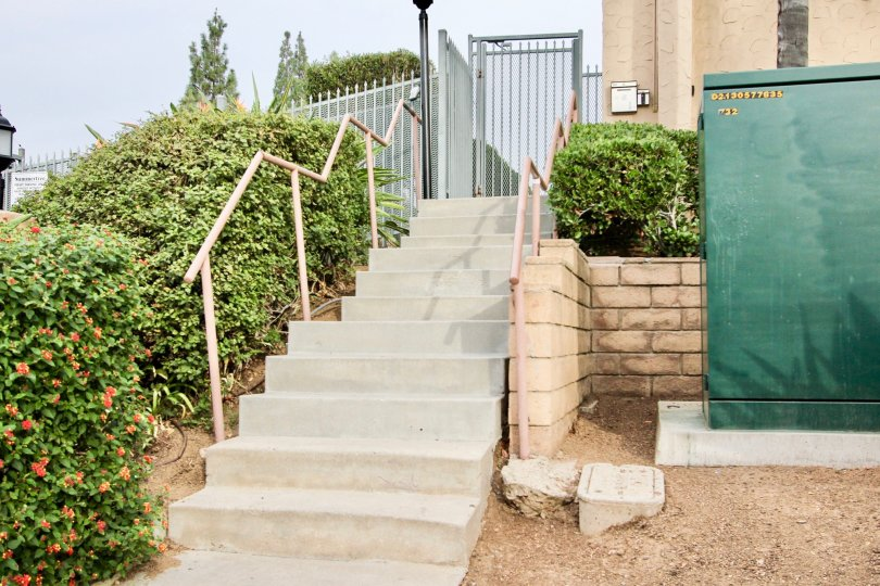 Summertree  , Spring Valley  ,California, staircase.plants
