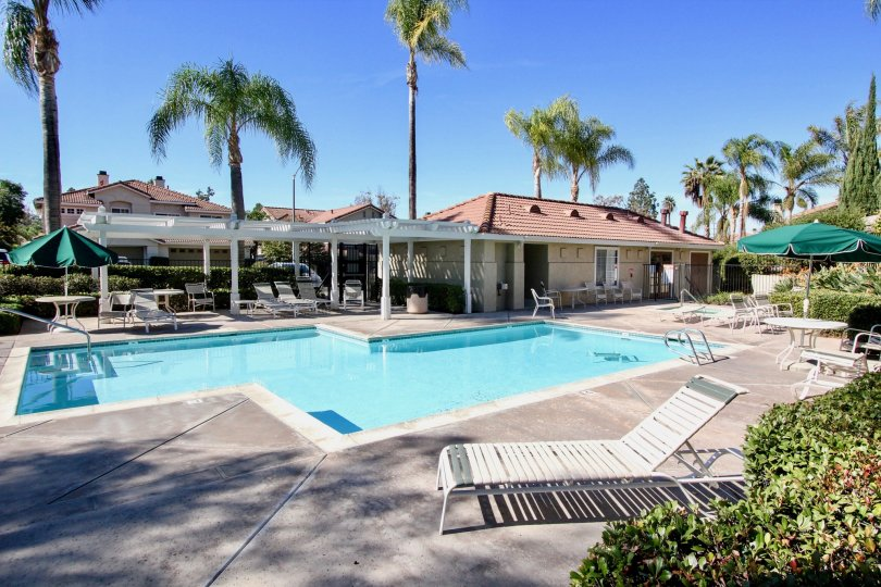 A beautiful swimming pool in front of California Capri community