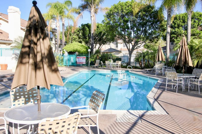 A sunny day in Calypso has swimming pools with chairs and surrounded by trees