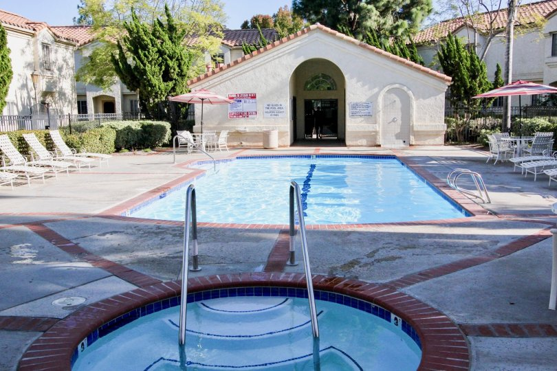 A swimming pool with some recliner chairs and some bushes and trees around it during a sunny day in Charlemont, Vista, CA