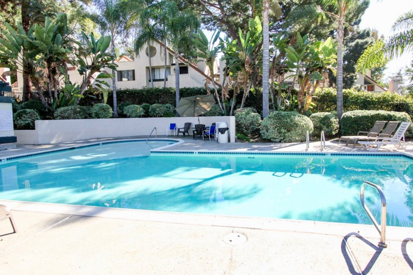 A sunny poolside scene in Melrose Park Vista, California with an in-ground pool and lounge chairs