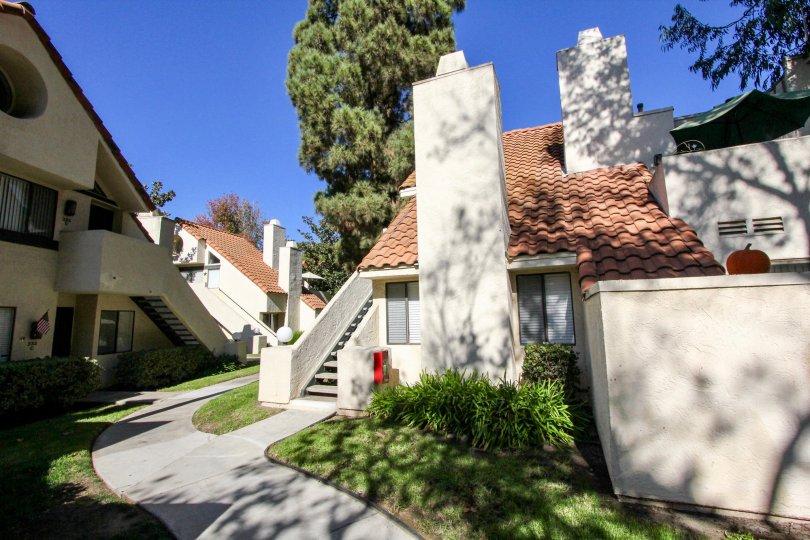 Melrose Park , Vista ,: California, blue sky,plants