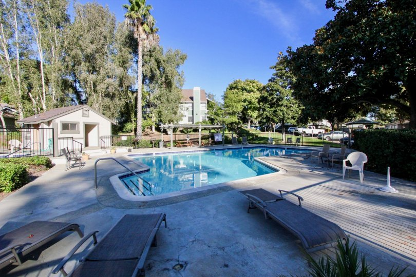 Beautiful sunny day by the peaceful pool in Vista, California