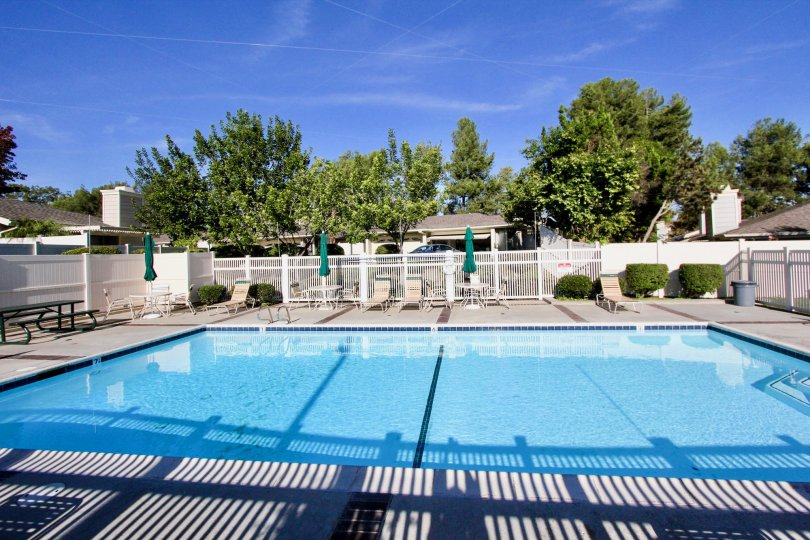 A large swimming pool with some recliner chairs, a white fence and trees and houses in the back during a sunny day in Shadowridge Greens, Vista, CA