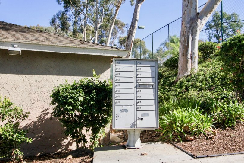 Mailbox on a sunny day in The Park in front of bushes