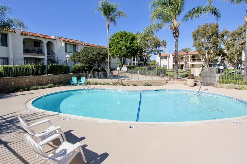 The bean shaped pool sits empty on a sunny day in the Vista Hill Estates condos.