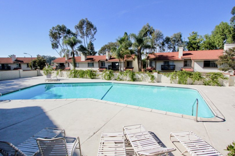 Large swimming pool near residential area at Vista Knolls in Vista California