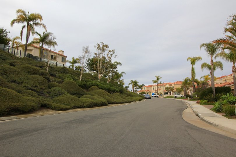 View looking up street in Belle Maison laguna Niguel ca
