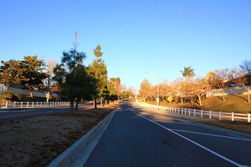 One of the many wide well kept streets in Lake Village Estates