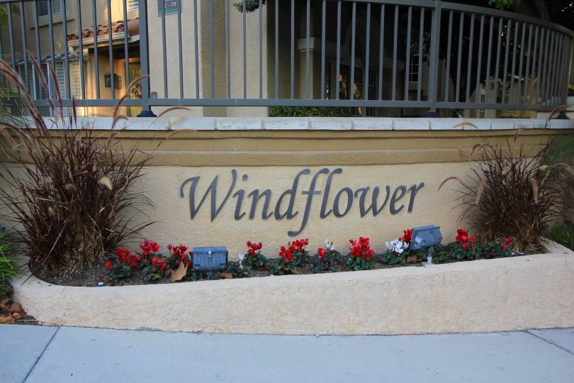 Well lit sign at the entrance of Windflower