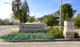 Sommerset Community Marquee