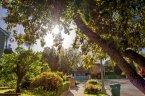 Miles of walking paths exist within the Royal Oaks neighborhood of Encino