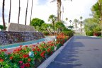 Beautiful landscaping at the entrance to the Dorado Villas neighborhood of Indian Wells