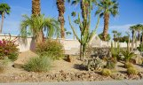 Desert Landscape is abound in the Indian Palms neighborhood