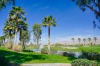 A beautiful picturesque lake within the Sun City Shadow Hills neighborhood