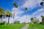 Greenery on each side of the La Quinta Country Club  golf path