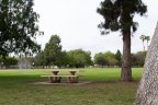 Large Park in Lakewood Village With Basketball and playground