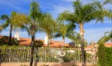Enjoy a plethora of amenities at Palmia Terraces in Mission Viejo Ca