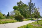 A lushly landscaped walking trail through the Hidden Springs community