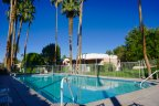 Swim at the Marrakesh Country Club community pool