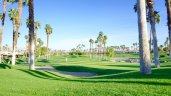 Green fairways of Palm Valley Country Club in Palm Desert CA