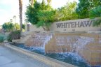 Whitehawk Community Marquee