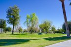 Pack a picnic basket and have a fun afternoon at Ruth Hardy Park
