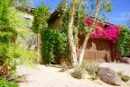 A beautiful single story home with ivy at The Villas in Old Palm Springs