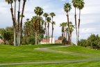 Palm Trees dot the landscape at Mission Hills Legacy