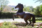 A beautiful horse statue at Mission Ranch in Rancho Mirage