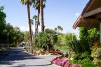 The streets within Rancho Las Palmas are well maintained by the HOA