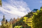 Beautiful views of Laurel Canyon from this hillside home