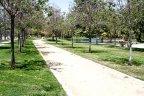 A beautifully landscaped walking trail near the lake at Heritage at Otay Ranch