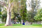 Residents of the Coronado Village enjoy physical activities including coming to park for relaxation and play