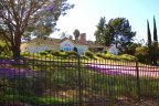 A front view from the street of the beautiful single family home with a lawn full of purple flowers is part of serene Olive Hill community