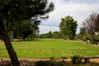 A view of the green of the golf course in Pala Mesa Neighborhood