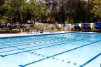 Community Pool in Rancho Arbolitos neighborhood