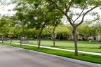 Professionally manicured landscape of Park in 4S Ranch